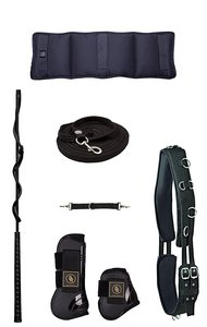 Horse Lunging Set