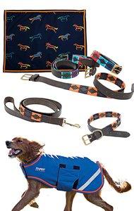 Shires Dog Set Navy/Orange
