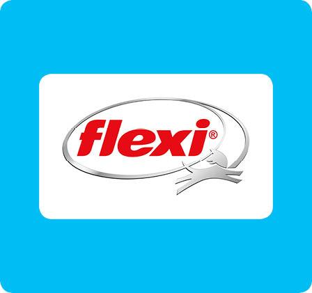 original_images/flexi.b566e9.jpg